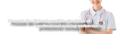 Promot the highest possible standards of professional nursing endavour